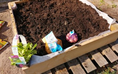 29-03-2019 : Les 3PREPA PRO au jardin !